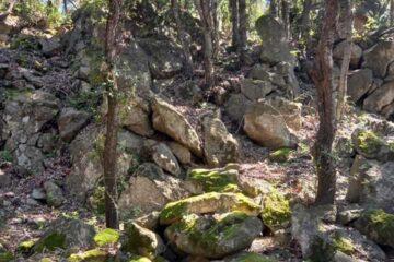 fumarole ischia trekking ai crateri
